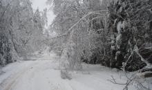 Ziemas atgriešanās Latvijas teritorijā