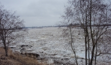 Palu laiks Latvijā