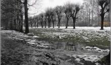 Novembra decembris Rīgā
