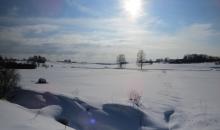 Balta saule spīd...