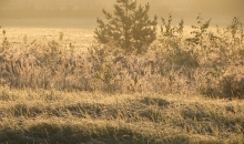 Nāk rudens apgleznot Latviju..