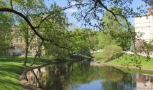 Ziedonis Rīgā, 14. maijā
