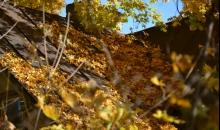Zeltītā oktobra pēcpusdiena Pārdaugavas pusē