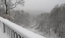 Sniegotais XAVERs