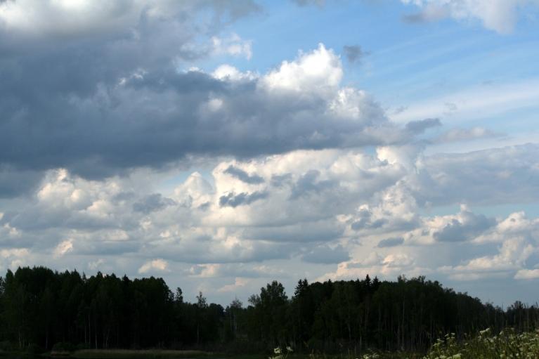 Autors: muntis. Vecpiebalga, 13.jūnijs