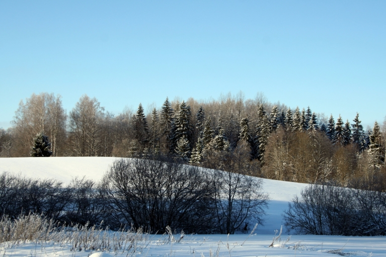 Skaisti ziemīgi skati Piebalgas pakalnos.
