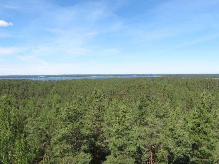 Kad neomulīgā sajūta pārvarēta, no 26 metrus augstā torņa paveras plašs skats gan uz mežiem, gan Usmas ezeru, kur sestdien redzami vairāki burātāji