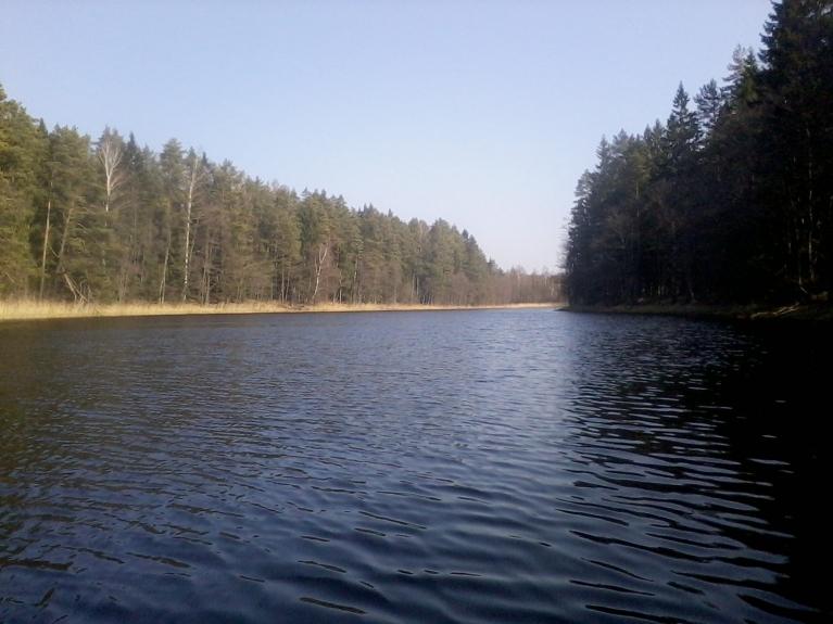 Rinda tūlīt pēc iztekas no Puzes ezera.