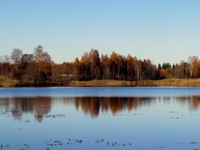 Šai nedēļai tipisks dienas vidus skats- zilas debesis, koki jau ar ļoti niecīgu lapu rotu.