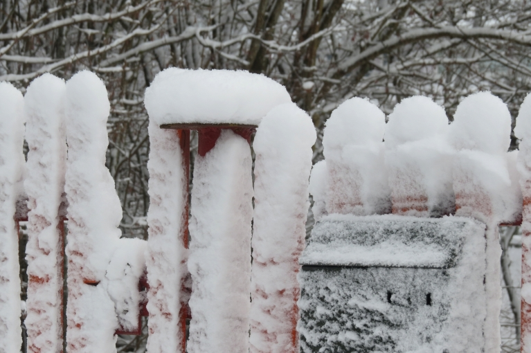 Sniega segas biezums ~ 8 cm