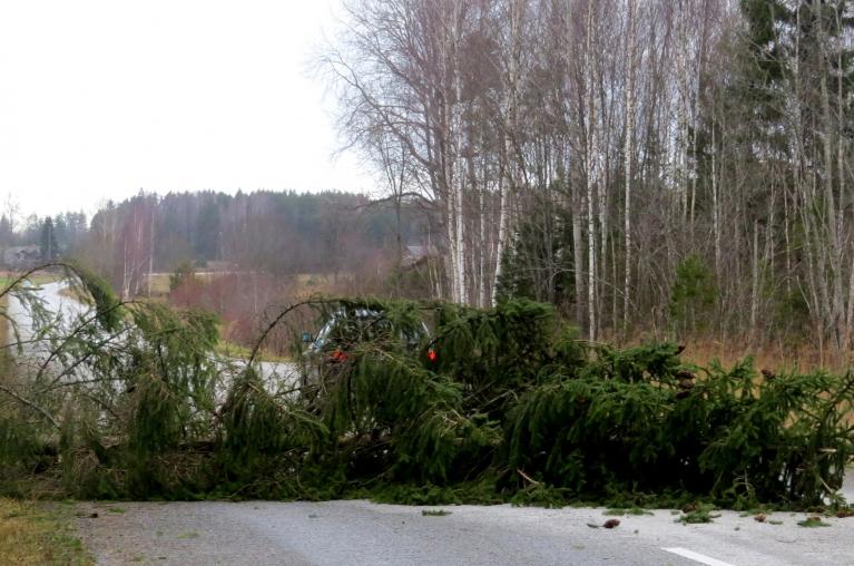 Jūtamākus postījumus atnesa 7. decembra vētra, lauzti atsevišķi koki, elektroapgādes traucējumi.