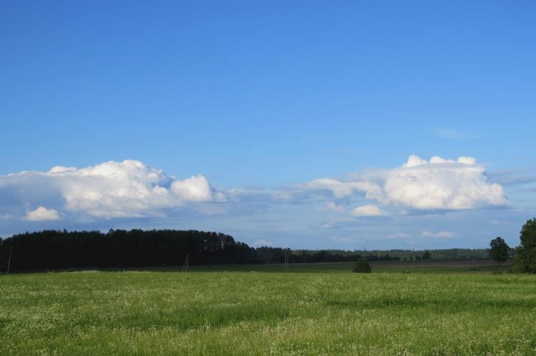Septiņi vakarā - austrumu pusē zilas debesis ar gubumākonīšiem.