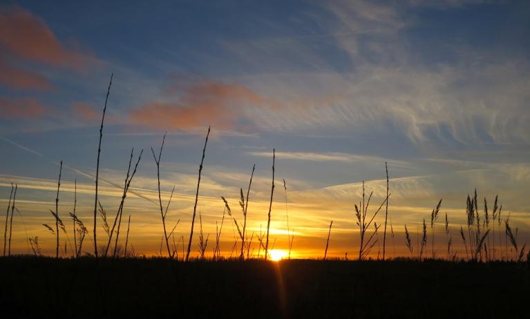 Vakarā skaists saulriets