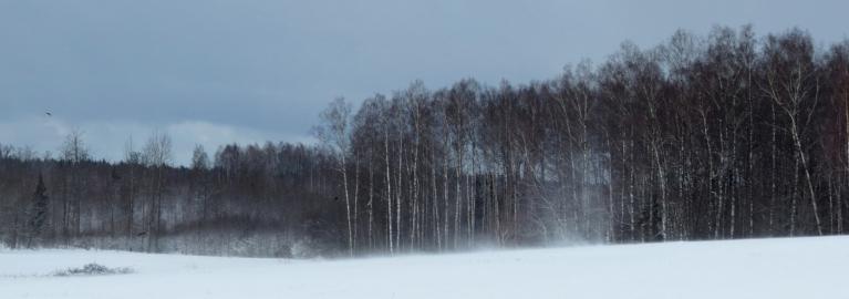 Drīz debesis atkal ir pelēkas un pa kalnu lejup aizgriežas nākošais sniega virpulītis.