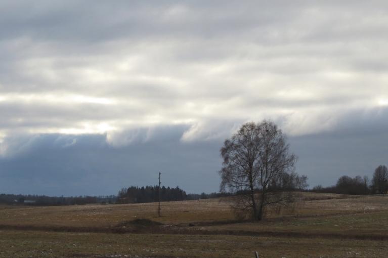 Gar pamali noslīd tumši sniega mākoņi, varbūt tagad sāksies?