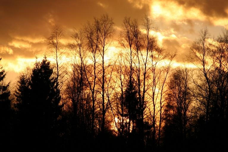 Autors: muntis. Pavasara vakara ainiņas Vecpiebalgā, 9.aprīlis