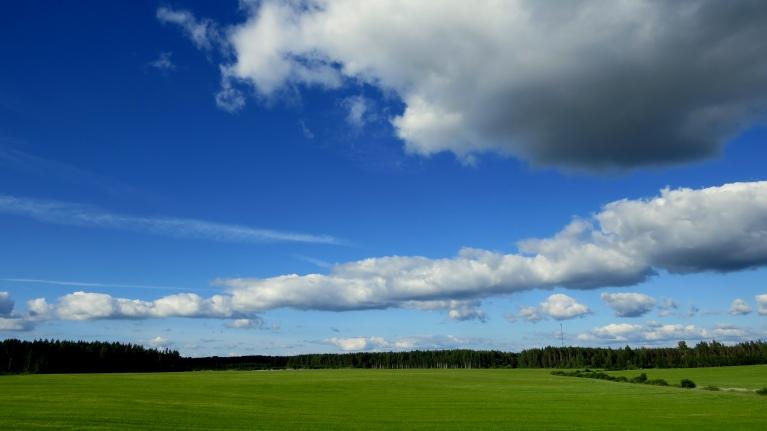 Foto: Migla. Saule, zilas debesis un pavēss ZR vējelis- tāda bija pirmā jūlija diena.