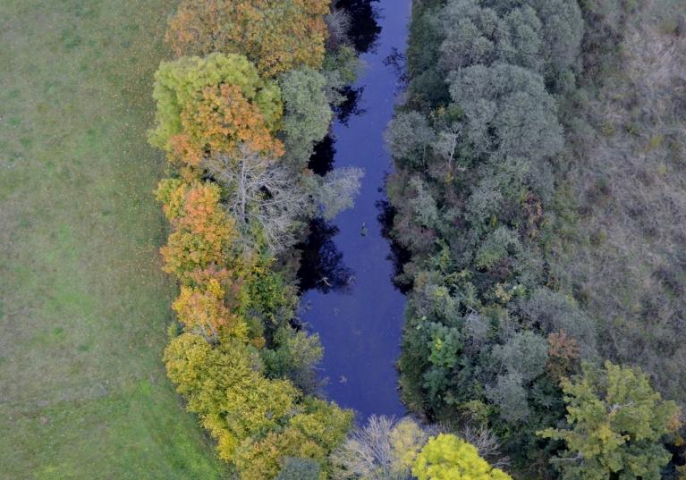 Skatoties uz šo attēlu liekas, ka rudens nāk no vienas puses. :)