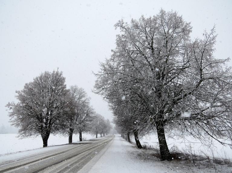 8. marta sniegs- pa ceļam no Siguldas uz Allažiem.