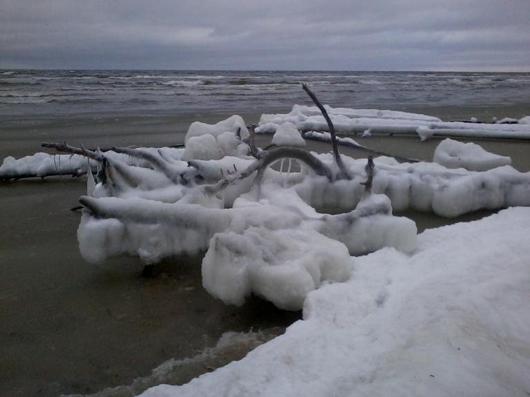 Līča pusē pie krasta arī sasaluši vižņi.