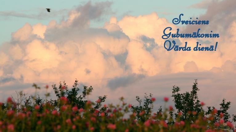 Sveiciens rītdienas gaviļniekam - Gubumākonim!