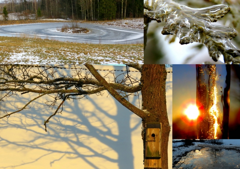 Februāris. Aukstākais rīts 17.02. -6°, siltākā diena 10.02. +5°.
