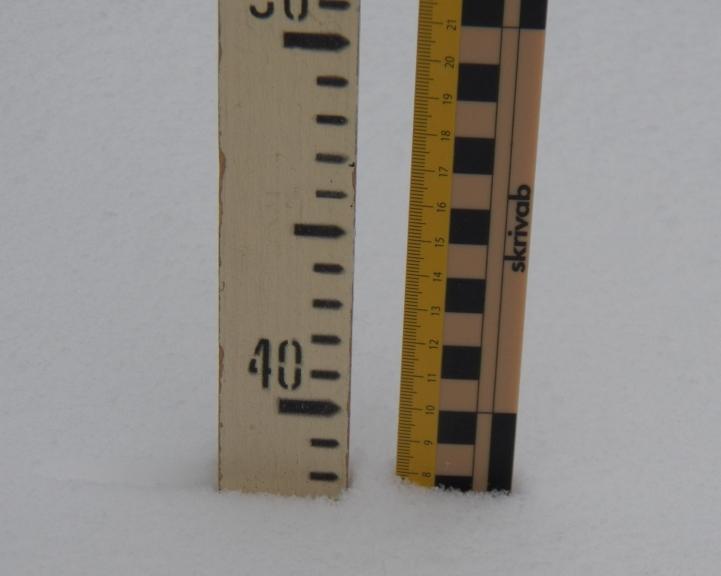 Pēc snigšanas. Pa kreisi - kopējais sniega dziļums, pa labi - svaigā sniega kārta. 3. marts. Žīguri.