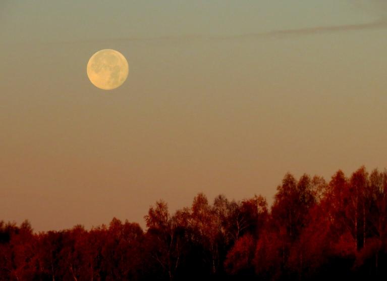 28. oktobra rīts, mēness gatavojas norietēt.