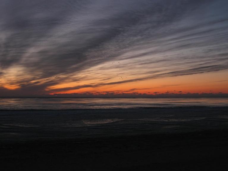 Autors: Mārča (latvju spānis). Liepājas pludmalē komētas meklējumos, 10.03.