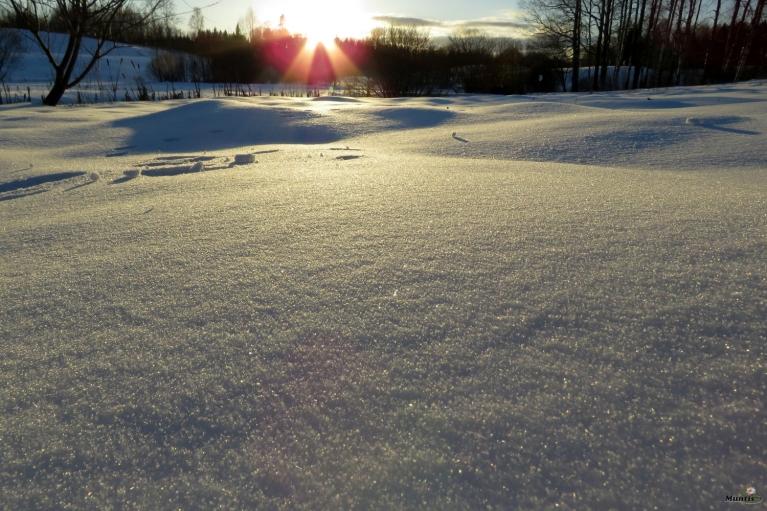 Februāris atvadās ar saulīti.