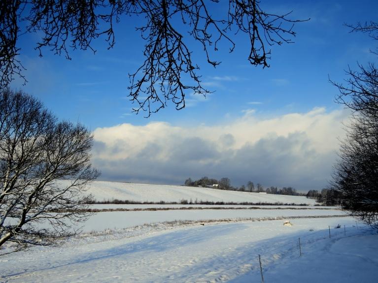 Pēc neliela sniega mākoņa izsnigšanas, Allažos uzspīd saule. Lielie mākoņu vāli aiziet uz Siguldu.
