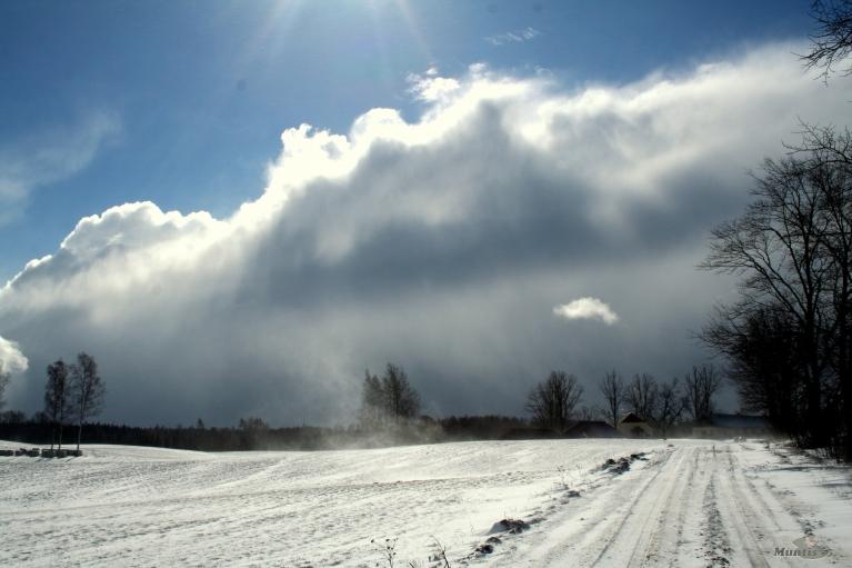 Autors: muntis, Vecpiebalga. Dienā palaikam cīruļputenis, stiprs ziemeļrietenis, temp. ap 0. (16.03.)
