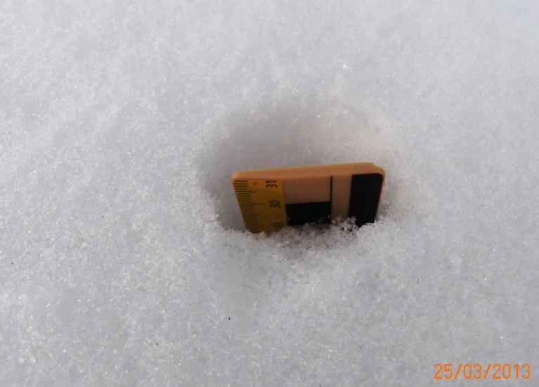 Sniega biezums uz līdzena laukuma - 31 cm 25. martā (šodien +15 cm) Žīguros