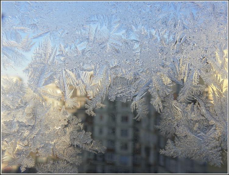Autors: gubumākonis. Rīgas noskaņas 29.un 30. janvārī