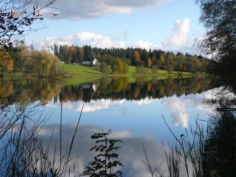 12.oktobris Siguldas apkārtnē. Tie jauki spoguļojas ezera mierīgajā ūdens spogulī