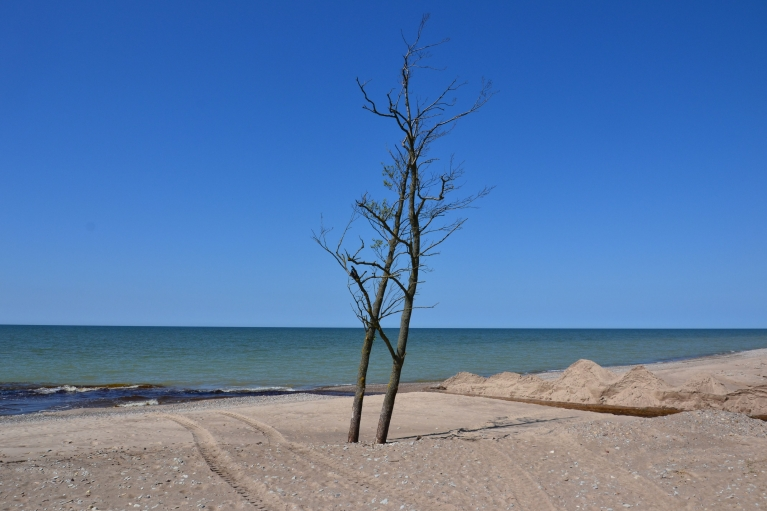Toties pēcpusdiena Liepājā pie jūras ir pilnīgi skaidra.