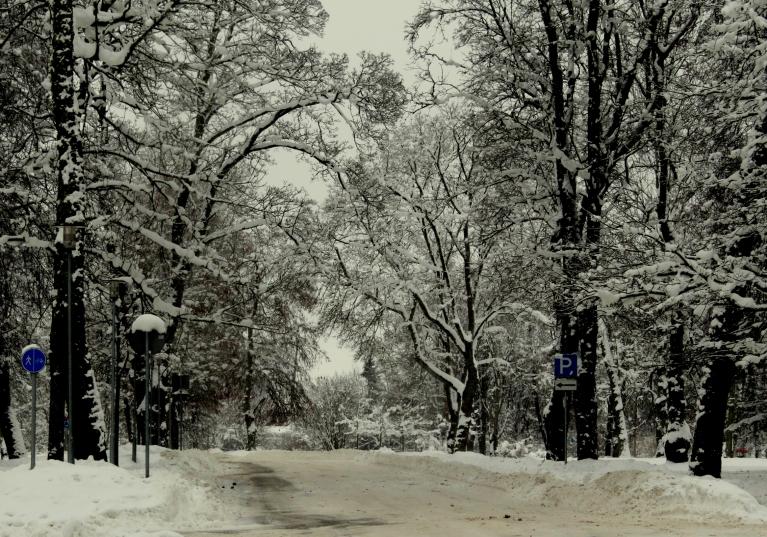 26. janvāra rītā Sigulda vēl sniega rotā.