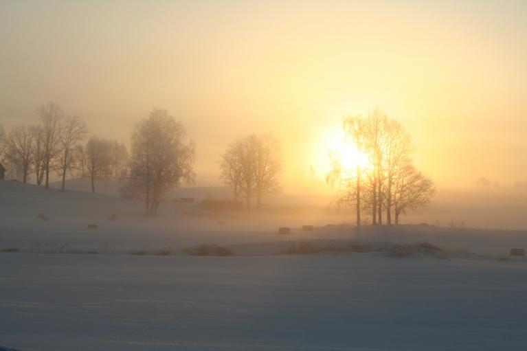 Autors: muntis. Arī Vecpiebalgai lēnām tuvojas pavasaris. 31.marts, -16 grādi.