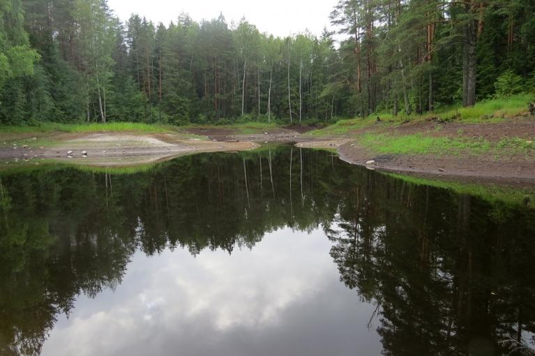 """""""Pazūdošais"""" Allažu ezeriņš sācis strauji pildīties ar purva ūdeni."""