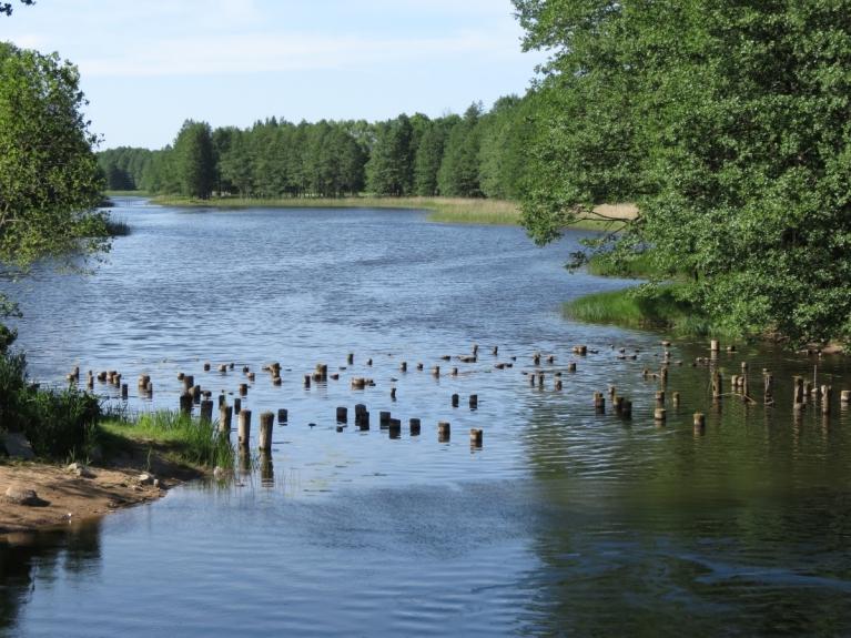 Līdz dienas izskaņai aplūkota tiek arī Rindas upe