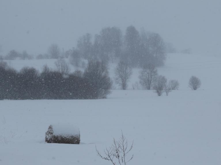 Autors: Migla. Sniegputenis savas vērpetes griež gan rīta, gan vakara pusē. 1.aprīlis
