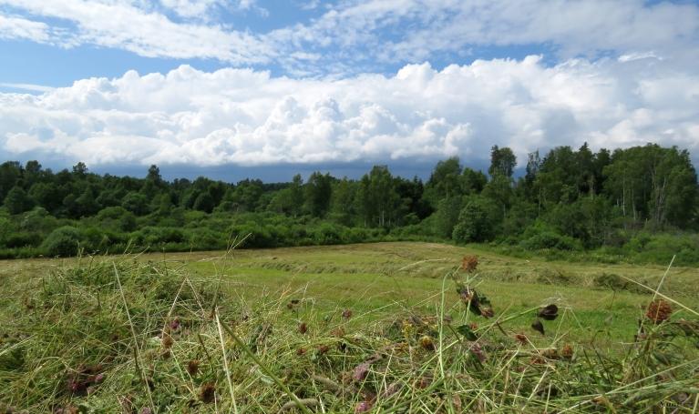 Foto: muntis. Fotogēniski mākoņi (9.07.)