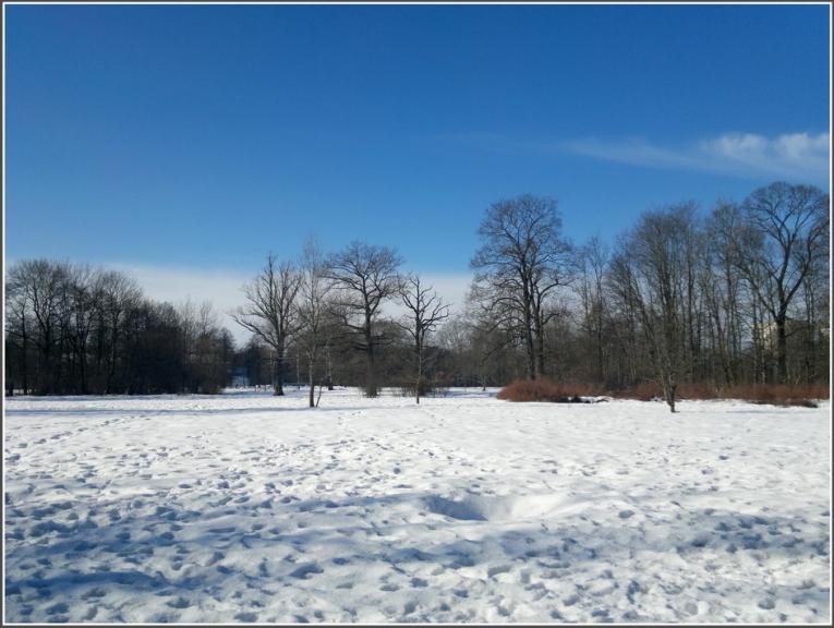 Autors: gubumākonis. Gaidot cikonu Rīgā, saulainā priekšpusdiena 02.03. Plašāka šī autora galerija ir pieejama šeit.