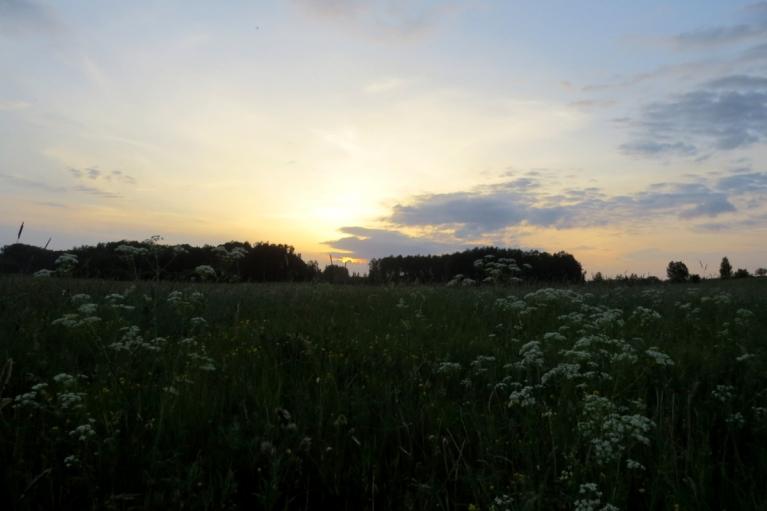 Pienācis silts, kluss un mierīga jūnija vakars.