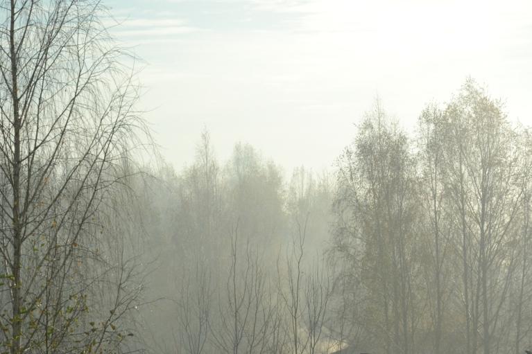 Vieglā rīta dūmaciņa rada gaišuma sajūtu...