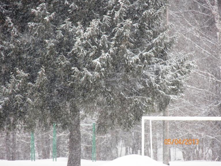 Lielā snigšana un putināšana 5.04.2013 Žīguros