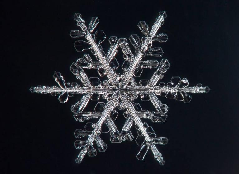 Sniegpārsliņa, Rīga, 20. janvāris