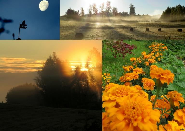 Septembris. Aukstākais rīts 20.09. 0°, siltākā diena 11.09. +24°.
