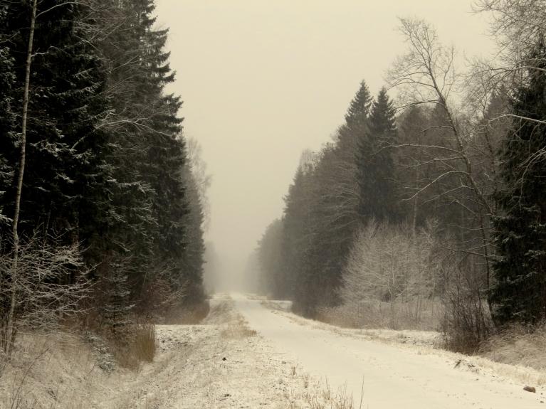 3. janvāra rītā debesis aizklāj mākoņi un ap deviņiem sākas snigšana.