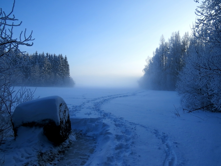 13. janvāris - rīts miglaini sarmots, diena saulaina (pusdienlaikā -15,6) Janvāris izceļas ar to, ka tā sākumā ir atkusnis, zvaigznes dienā (6.01.) iestājas sals, kas turpinās līdz 31. janvārim, kad t uz 2 dienām iešūpojas nelielos plusos.
